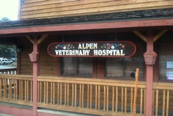 vet in mammoth, california