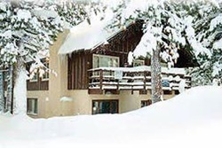dog friendly hotel in mammoth
